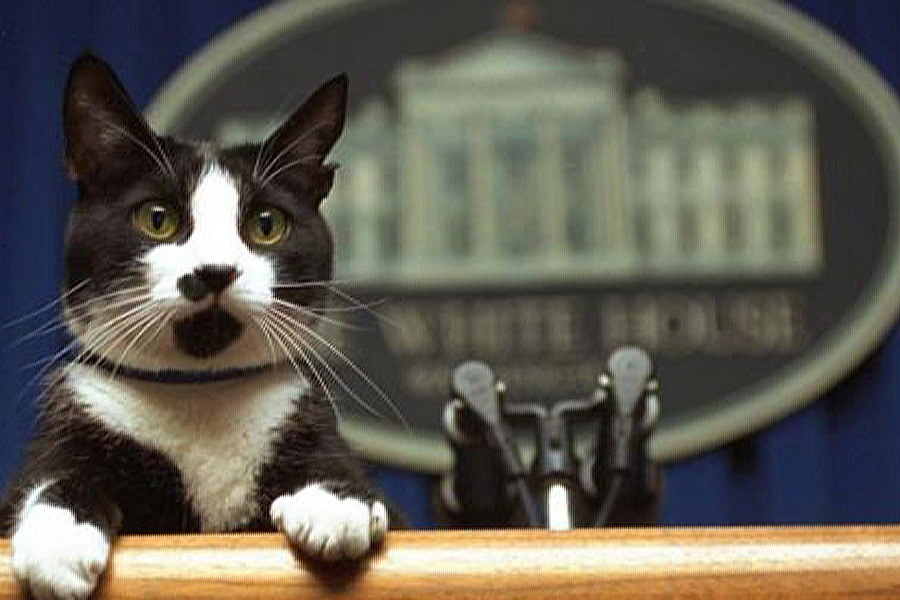 Vance Von Ruffles at his recent meowerism speech.